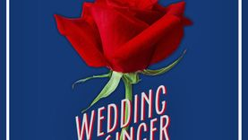 The Wedding Singer (Geyster Remix) ซิงเกิ้ลคนโสดช่างฝัน เพลงเดิม เพิ่มเติมคือความหวาน