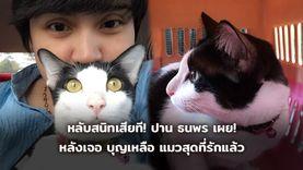 หลับสนิทเสียที! ปาน ธนพร สุดดีใจ หลังเจอ  แมวสุดที่รักแล้ว