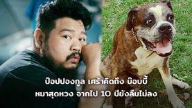 ภาพจำ! ป๊อป ปองกูล โพสต์เศร้าคิดถึง บ๊อบบี้ หมาสุดหวง จากไป 10 ปียังลืมไม่ลง