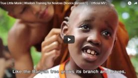 Official MV - Wisdom Training for Novices (Novice Version 1) - True Little Monk