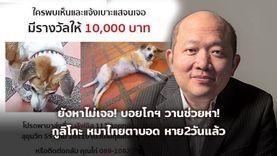 ยังหาไม่เจอ! บอยโกฯ วานช่วยตามหา กูลิโกะ หมาไทยตาบอด หายไป2วันแล้ว