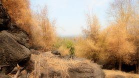 อุทยานสวนหินพุทธสถานทวารวดีอู่ทองเชิงนิเวศ