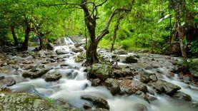เที่ยวน้ำตกสาริกา ธรรมชาติสีเขียวใกล้กรุงเทพฯ ในวันฝนพรำ