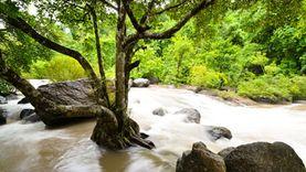 เที่ยวหน้าฝนชุ่มฉ่ำ ดื่มด่ำธรรมชาติ ที่ น้ำตกนางรอง นครนายก