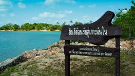เที่ยว เกาะมันใน ดูเต่าทะเลที่ศูนย์อนุรักษ์พันธุ์เต่าทะเล ชิลล์ทะเลระยอง