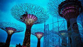 Gardens by the Bay @ Marina Bay สวนไฮเทค แห่ง สิงคโปร์