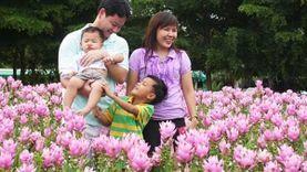 สิงหาพาแม่เที่ยว ทุ่งดอกกระเจียวสื่อรักวันแม่ จังหวัดสุพรรณบุรี