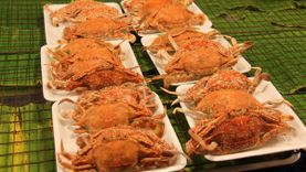 ลิ้มรสอาหารทะเลสดๆ ราคาไม่แพง ในงาน เทศกาลอาหารหัวหิน ประจำปี 2558