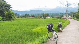 ปั่นจักรยานเที่ยวปาย สัมผัสวิถีชีวิตชุมชน ชมธรรมชาติยามเช้า และทุ่งนาข้าวสีเขียว