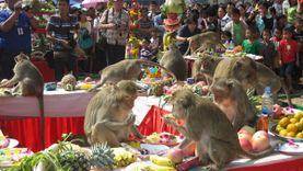 งานเลี้ยงโต๊ะจีนลิง ครั้งที่ 27 ประจำปี 2558 จ.ลพบุรี