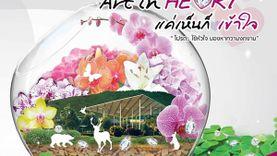 Art in HeArt งานแสดงดอกไม้สุดยิ่งใหญ่แห่งปี ที่ ดาษดาแกลเลอรี่ เขาใหญ่ ปราจีนบุรี