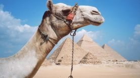 อียิปต์ เตรียมเปิดพิพิธภัณฑ์ไอยคุปต์ แห่งแรกในสนามบินไคโร