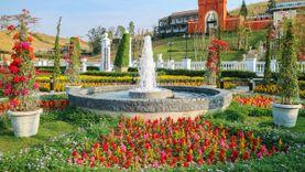 The Bluesky Garden สวนดอกไม้สไตล์อังกฤษ ที่เที่ยวเปิดใหม่เขาค้อ สวยเหมือนอยู่เมืองนอก!