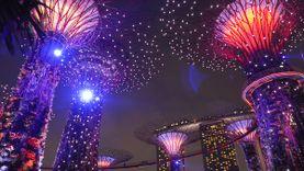 Super Trees เต้นระบำที่ Gardens By The Bay เมืองในสวน สิงคโปร์