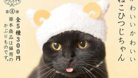 กาชาปอง เพื่อน้องแมว? ไอเท็มพิเศษ คอสเพลย์เหมียวให้เป็นแกะ