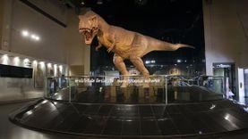 ท่องโลกดึกดำบรรพ์ พิพิธภัณฑ์ ไดโนเสาร์ ภูกุ้มข้าว จังหวัดกาฬสินธุ์