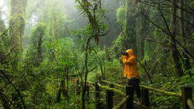 10 เคล็ดลับเตรียมตัวให้พร้อม เที่ยวป่าหน้าฝน ให้สนุกและปลอดภัย!