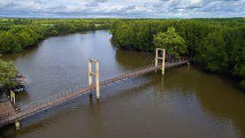 สะพานรักษ์แสม ที่เที่ยวระยอง สวยไม่แพ้ทุ่งโปรงทอง!