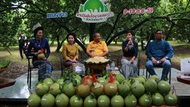 งานส้มโอขาวแตงกวา เมืองชัยนาท ครั้งที่ 33