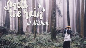 ครั้งหนึ่งเคยมาดมกลิ่นฝน Alishan ไต้หวัน Once Upon a Trip