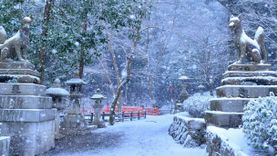 ชมภาพ 7 ที่เที่ยว เกียวโต ถูกปกคลุมด้วยหิมะ หลังอากาศเย็นจัดทั่วญี่ปุ่น