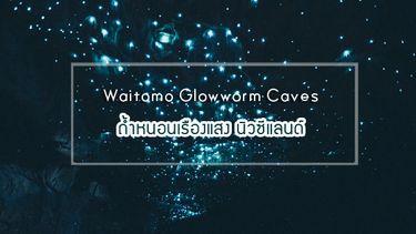 Waitomo Glowworm Caves ถ้ำหนอนเรืองแสง มหัศจรรย์กว่า 30 ล้านปี