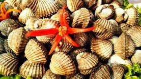 ยกทัพอาหารทะเลสดๆ มาให้ลิ้มลอง ในงานเทศกาลอาหารทะเล จังหวัดสมุทรสาคร