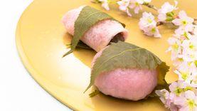 หาไรกินกัน! แนะนำของอร่อย จาก ซากุระ มีให้ลองแค่ฤดูใบไม้ผลิ ประเทศญี่ปุ่น