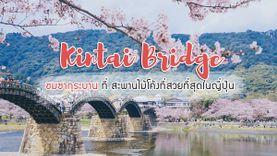 ชมซากุระบาน ที่สะพานคินไทเคียว (Kintai Bridge) สะพานไม้โค้งที่สวยที่สุดในญี่ปุ่น
