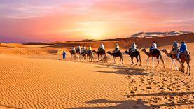 จัดอันดับ 10 ทะเลทราย ที่ใหญ่ที่สุดในโลก