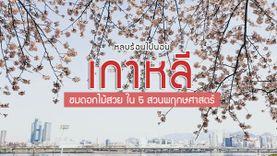 หลบร้อนไปนอน เกาหลี ชมดอกไม้สวย ใน 5 สวนพฤกษศาสตร์ พร้อมแผนที่การเดินทาง