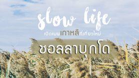 เที่ยวเกาหลี แบบ Slow life เปิดแมพ ที่เที่ยวใหม่ ชอลลาบุกโด วิธีเดินทาง แผนที่ครบ