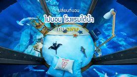 เปลี่ยนที่นอน ไปนอน โรงแรมใต้น้ำ กับ ฉลาม ที่ The Shark Aquarium อย่างนี้ก็ได้เหรอ !
