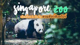 Singapore Zoo เดินเที่ยว 1 วัน ใน สวนสัตว์สิงคโปร์