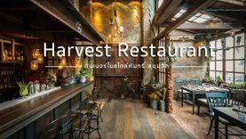 ดินเนอร์ในสไตล์คันทรี่ Harvest Restaurant ร้านอาหารสุขุมวิท บรรยากาศฮิปด้วย โรแมนติกด้วย