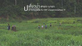 เที่ยวป่า หน้าฝน ฮาลา-บาลา ยะลา เขียวชอุ่ม ชุ่มฉ่ำใจ