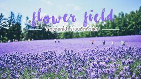 7 ทุ่งดอกไม้ สวย โรแมนติก ทั่วโลก ที่เที่ยวถ่ายรูปสวย ท่ามกลางดอกไม้