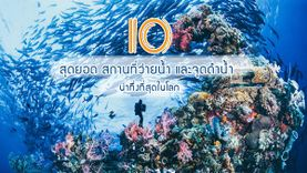 รวม 10 สุดยอด สถานที่ว่ายน้ำ และ จุดดำน้ำ น่าทึ่งที่สุดในโลก