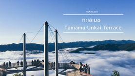 ทะเลเมฆ ฮอกไกโด Tomamu Unkai Terrace ไฮไลท์เด็ดหน้าร้อนนี้ ห้ามพลาด!!