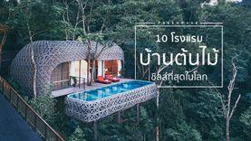 10 โรงแรม บ้านต้นไม้ ชิลล์ที่สุดในโลก ต้องไปให้ได้ในชาตินี้ ! (มีไทย)