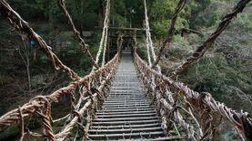สะพานเถาวัลย์ 1000 ปี คาซูระบาชิ สะพานไม้ เร้นลับแห่งหุบเขาอิยะ ประเทศญี่ปุ่น