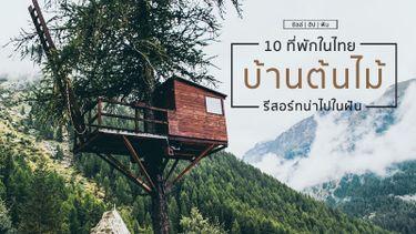 10 ที่พัก บ้านต้นไม้ ในไทย รีสอร์ทน่าไปในฝัน
