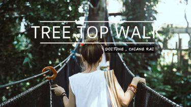 DoiTung Tree Top Walk ที่เที่ยวเชียงราย สนุกสุดฟินเหนือยอดไม้ ที่คุณไม่ควรพลาด!