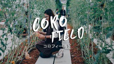 พาเที่ยว CORO Field สวนผึ้ง ฟาร์มทันสมัยสไตล์ญี่ปุ่นสุดชิค แห่งแรกในไทย