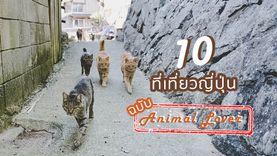10 ที่เที่ยวญี่ปุ่น ฉบับ Animal Lover
