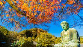 เที่ยวญี่ปุ่น รับมือถือฟรี! จังหวัดคานากาวะ แจกโทรศัพท์ให้ใช้ระหว่างท่องเที่ยว