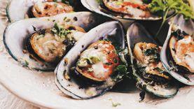 5 อาหารทะเลห้ามพลาด เมื่อไปเยือนนิวซีแลนด์