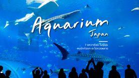 7 อควาเรียม น่าเที่ยว ในญี่ปุ่น ท่องโลกใต้ทะเล ชมสัตว์น่ารัก คนรักปลาทะเลไม่ควรพลาด
