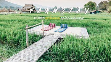 10 ที่พัก ฟาร์มสเตย์ เที่ยวหน้าฝน สูดไอดินกลิ่นหญ้า วิวทุ่งนา โดนใจสายออร์แกนิก
