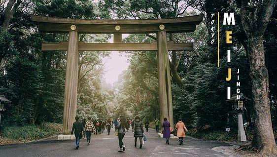 หลุดไปอีกโลกนึง ศาลเจ้าเมจิ (Meiji Jingu) ป่าเขียวกลางกรุง โตเกียว